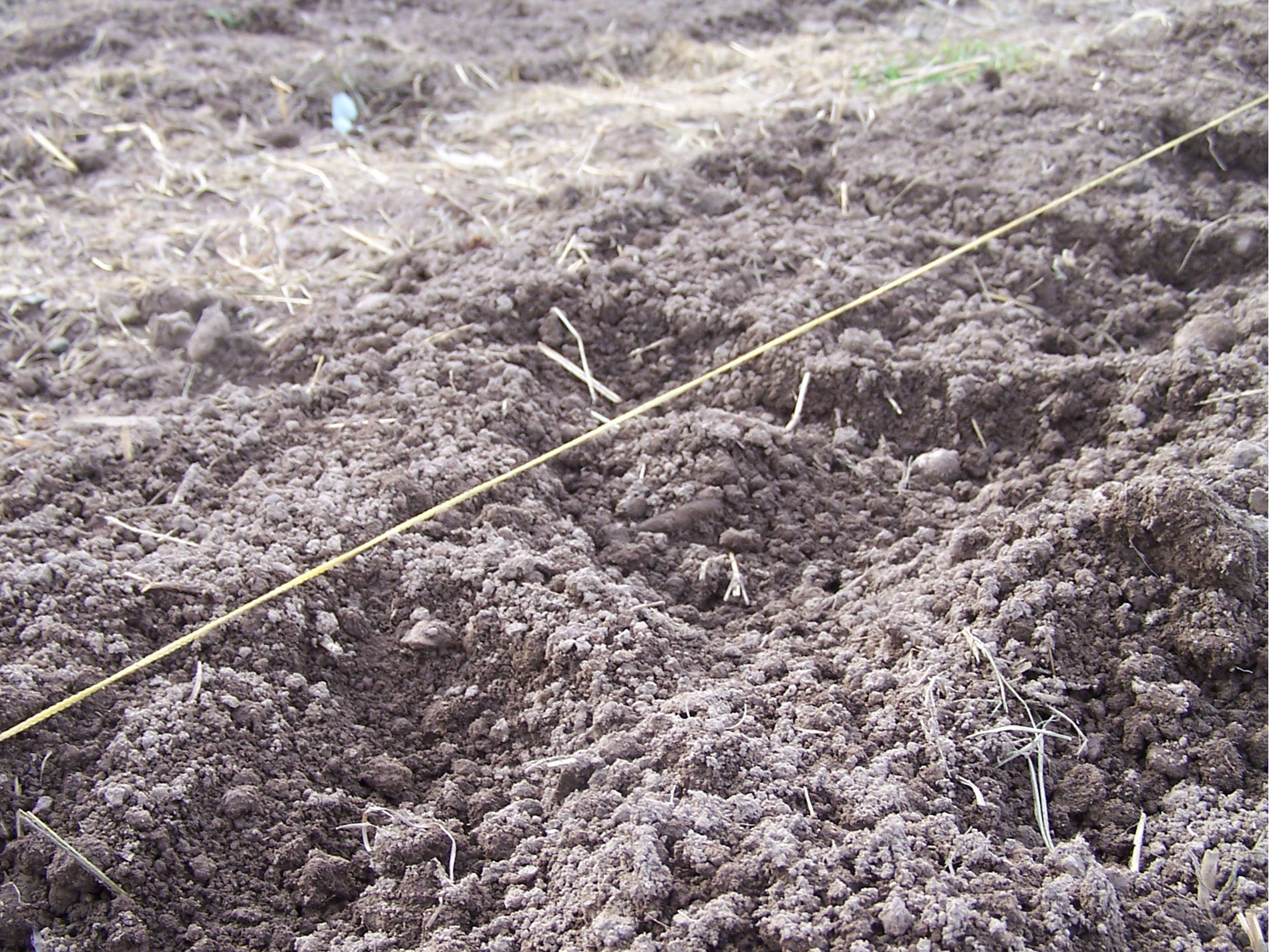 About the growers we grow for Soil fertility