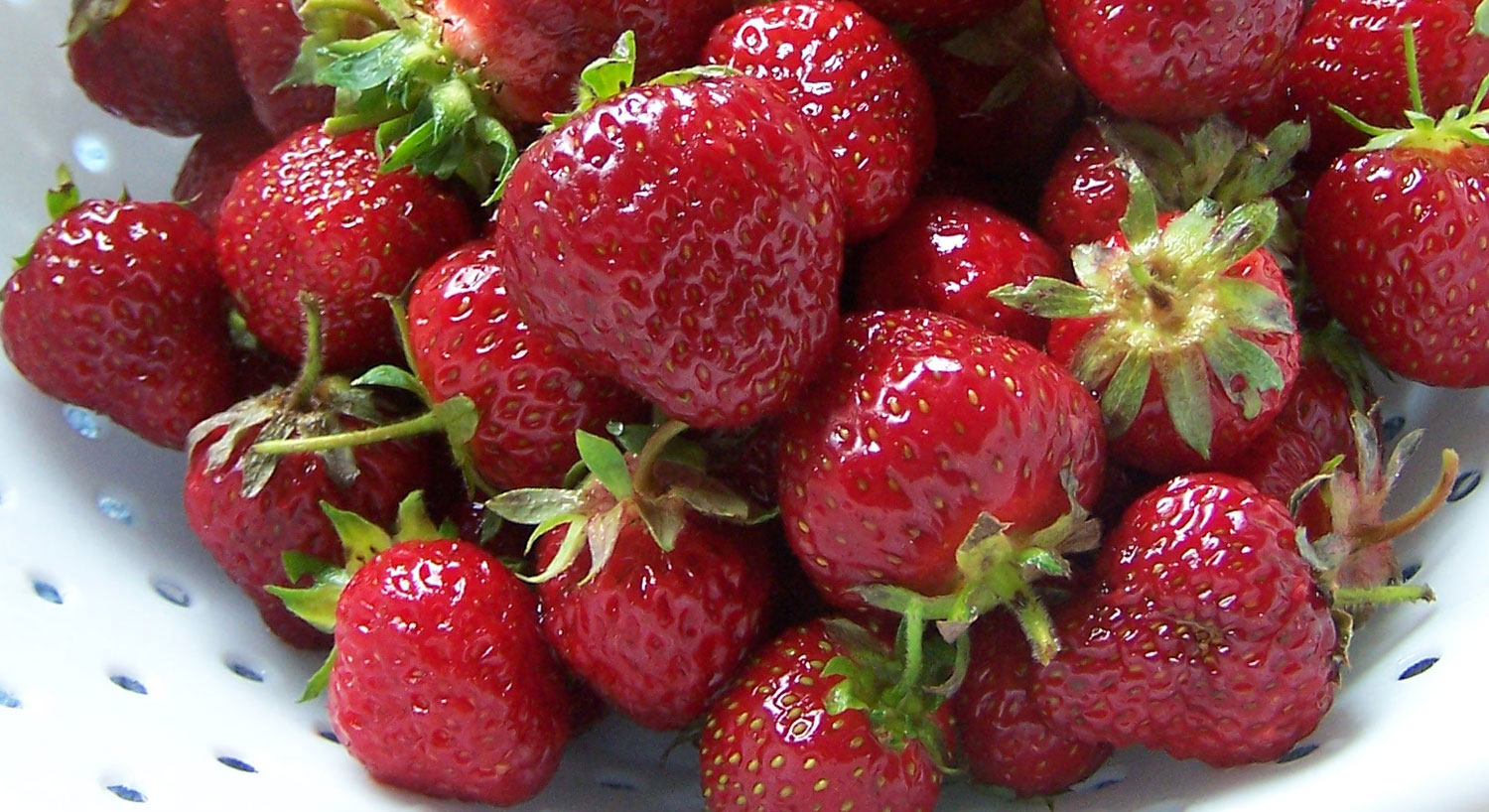 strawberries_7965