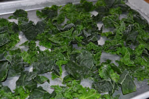 How to Freeze Kale | We Grow LLC