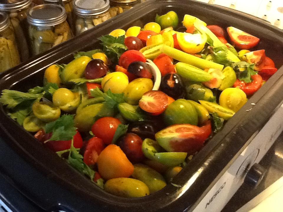 Making tomato soup recipe