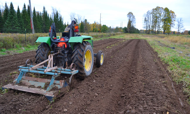Shaping beds for fall garlic planting at We Grow LLC